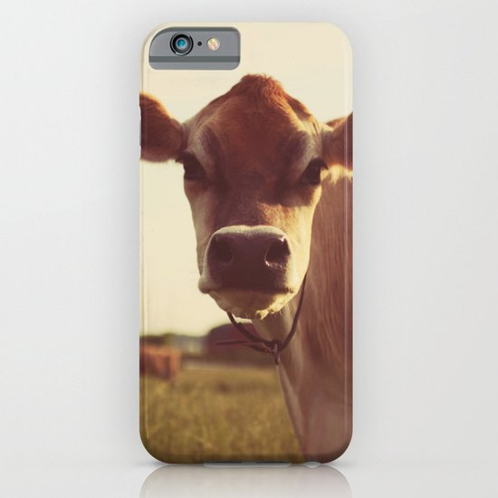 cow iPhone & iPod Case