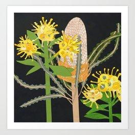 Acorn Banksia Art Print