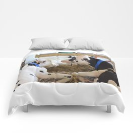 Pair Of Black And White Cows 2 Comforters