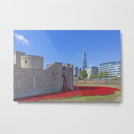 Poppies in the Moat Metal Print