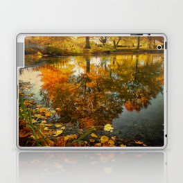 Reflection of the fall Laptop & iPad Skin
