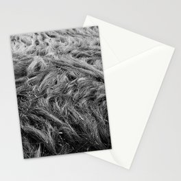 Bedding Behaviour Stationery Cards