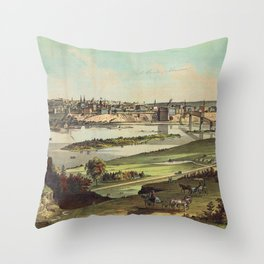 Aerial View of St. Paul, Minnesota (1874) Throw Pillow