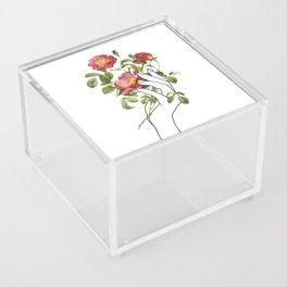 Flower in the Hand II Acrylic Box