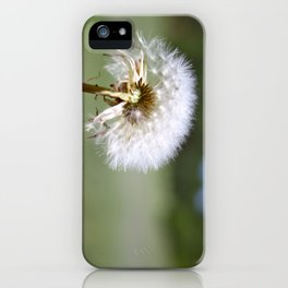Don't Blow Away iPhone Case