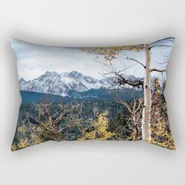 Existing Rectangular Pillow