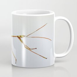 Walking stick bug Coffee Mug