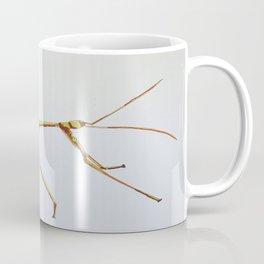 Walking stick bug Coffee Mug
