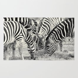 Zebra Lunch Time photography Rug