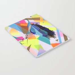 Geo Fly Birds Notebook