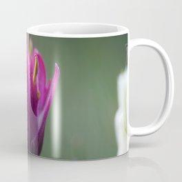 Pink Indian Paintbrush Coffee Mug