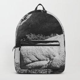 Big Rock 7444 Joshua Tree Backpack