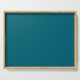 Dark Quetzal Blue Green 2018 Fall Winter Color Trends Serving Tray