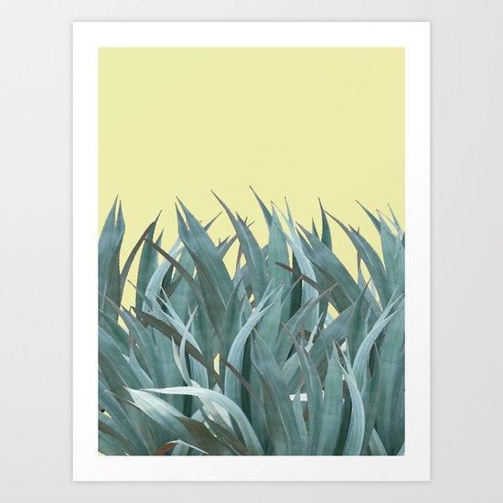 Agaves Art Print