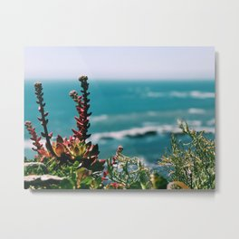 Seaside garden Metal Print