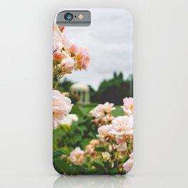 Pink Roses in Marie Antoinette's Garden, Versailles, France iPhone Case