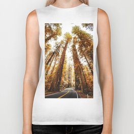 red woods forest in california Biker Tank