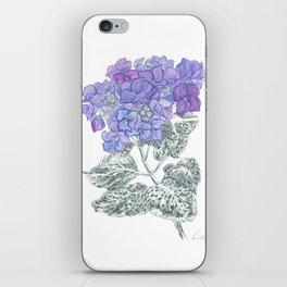 Hydrangea 01 Botanical Flower * Lavender Blue Hydrangea iPhone Skin