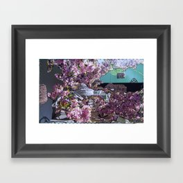 Salty Cherry Blooms Framed Art Print