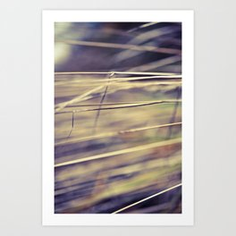 Comfort In Simplicity  Art Print