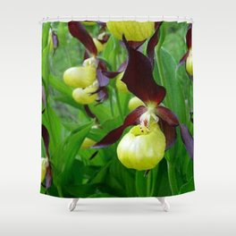 Rhode Island Wild Orchid Black and Yellow Lady Slippers Shower Curtain