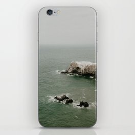 bird island iPhone Skin