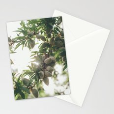 Almond Tree Stationery Cards