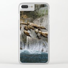 Group of sea lions on rock formation near sea during daytime Clear iPhone Case
