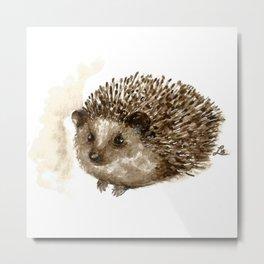 Little hedgehog Metal Print