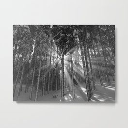 The Golden Light (Black and White) Metal Print