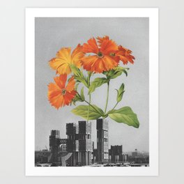 "255 - ""a tree grows in Brooklyn"" Art Print"