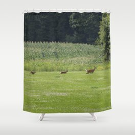 Mother Deer and Twins Shower Curtain