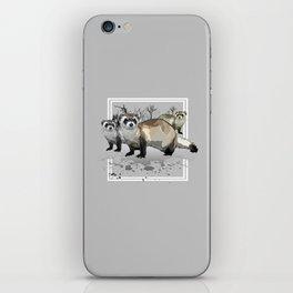 Ferrets iPhone Skin