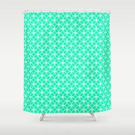 Trellis_Mint Green Shower Curtain