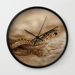 Snake reflection in water puddle Wall Clock