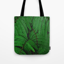 Layers Of Wet Green Fern Leaves Patterns In Nature Tote Bag