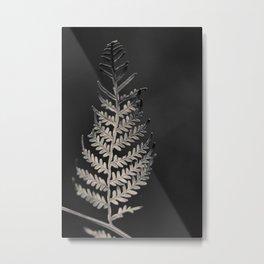 The Silver Fern Metal Print
