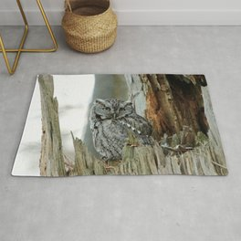 Adult male screech owl Rug