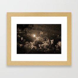 Fairies of the Forest Framed Art Print