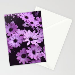 Black & Lilac Color Purple Daisies Stationery Cards