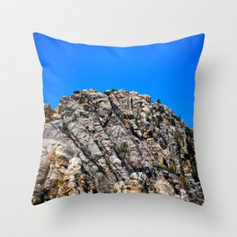 Black Hills View Throw Pillow