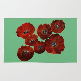 Poppies in Red Rug