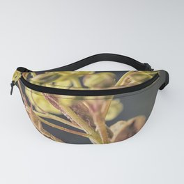 look at me - closer Fanny Pack