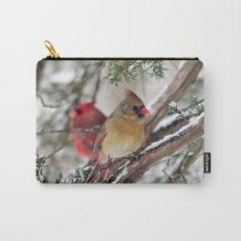 Tandem Cardinals Carry-All Pouch