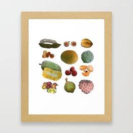 Exotic Fruit Collage Framed Art Print