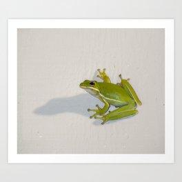 tree frog and his shadow Art Print