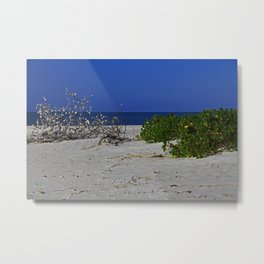 The Beach at Gasparilla State Park II Metal Print