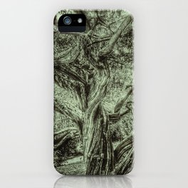 The Life of a Tree iPhone Case