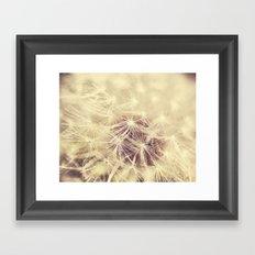 Dandelion Glow Framed Art Print