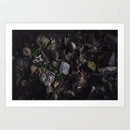 Remains of a Bygone Predator, Flat Lay Art Print